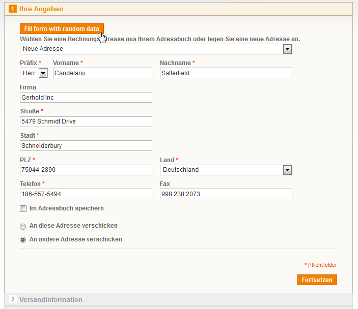 Screenshot: Formulare im Checkout
